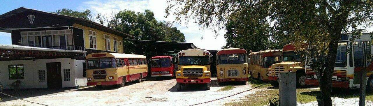 bussen reinigen carwash aan huis
